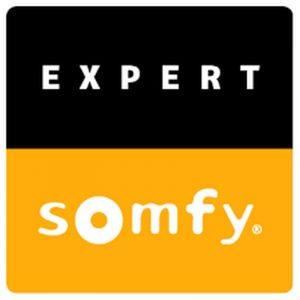 Somfy screen motoren en besturing vraag advies aan protectsun.nl